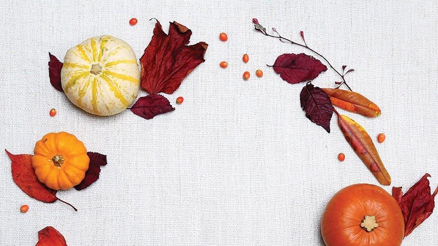 Les Fitaliments de l'automne